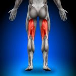 A Pain in the Butt: 5 Signs of Chronic Hamstring Tendinopathy